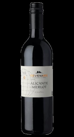 Globe Alicante-Merlot