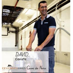 David Caviste